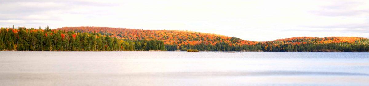algonquin-provincial-park-canada-daylight-577145